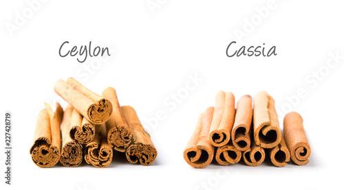 Fotografie, Obraz Ceylon Zimt und Cassia Zimt im Vergleich  - Freisteller mit Beschriftung