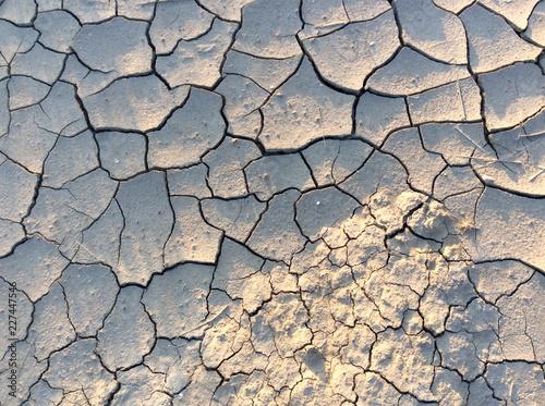Fotografie, Obraz  Texture - dry grey clay