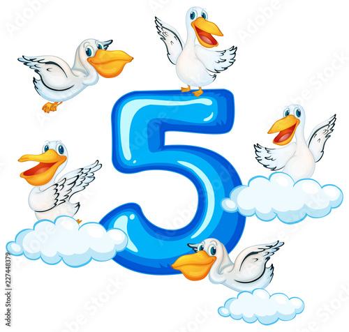 Staande foto Kids Five pelican and number five