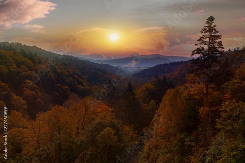 Foto op Plexiglas Japan beautiful autumn season leaves color change in hokkaido japan