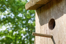 Close-up Of Wooden Birdhouse With Hole And Landing Peg Against A Blurred Green Background
