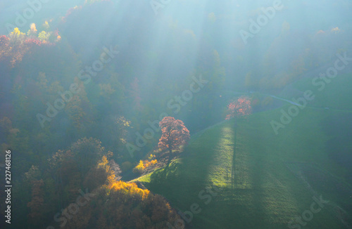 Lichteinfall am Berg / Schwarzwald im Herbst