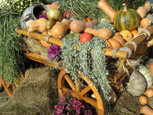 Wooden Cart With Pumpkins And ...