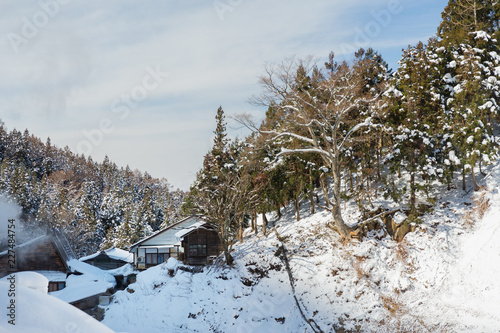 Fotografía  nature and landscape concept - country houses and forest hills in winter, japan
