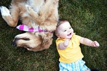 Boy Lying By Dog On Grass