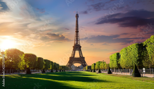 Garden Poster Eiffel Tower Sunrise and Eiffel Tower