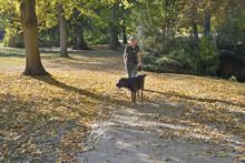 Seniorin Spaziert Mit Hund Im Herbstlichen Schlosspark