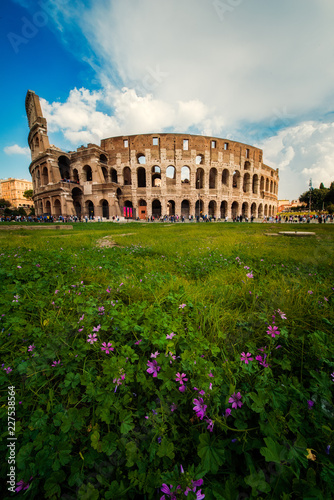 Canvastavla The Roman Colosseum (Coloseum) in Rome, Italy, vertical view with flowers in for