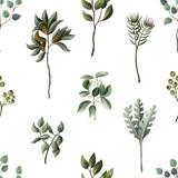 Wzór z eukaliptusa, magnolii, liści paproci i sukulentów. Modny rustykalny zioło tło wektor. - 227538907