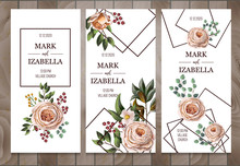 Delicate Wedding Invitation With English Roses, Eucalyptus, Flowers And Frames In Watercolor Style. Vector.