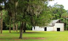 Kingsley Plantation In Jackson...