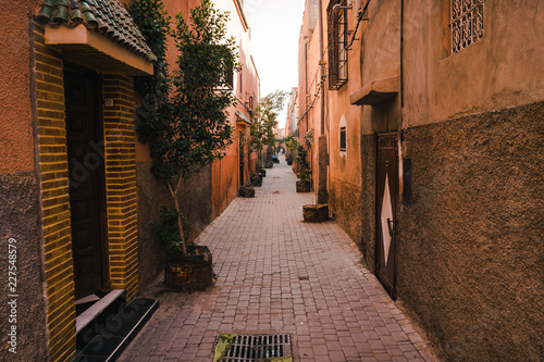 Narrow red/orange alley street in medina of Marrakech, Morocco. .with plants decoration