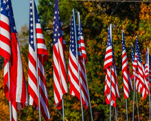 American Flags In Autumn