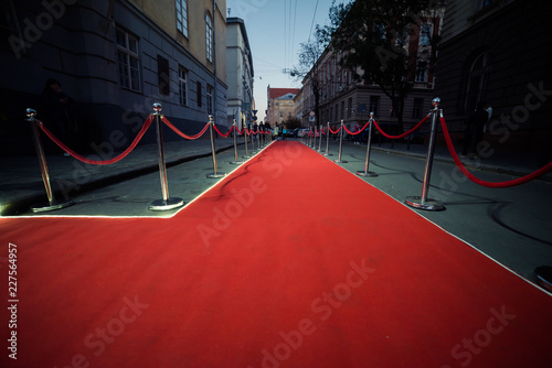 Fotografie, Obraz  Long red carpet between rope barriers on entrance.