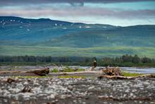 Katmai National Park - Wide An...