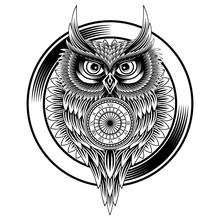 Owl Clock Line Draw Vector Illustration
