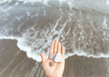 Hand Holding Coral, Beach Stones And Shell By The Shore