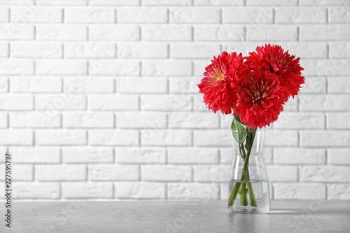 Photographie Beautiful dahlia flowers in glass vase on table against brick wall