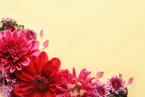 Montage in der Fensternische Dahlie Flat lay composition with beautiful dahlia flowers and space for text on color background
