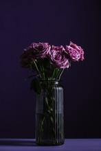 Purple Roses In Vase