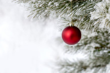 Christmas Decorations On The Pine Branch