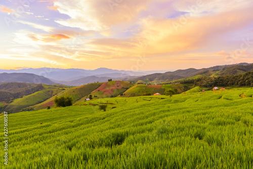 Fotobehang Rijstvelden Small house and rice terraces field at pabongpaing village rice terraces Mae-Jam Chiang mai, Thailand