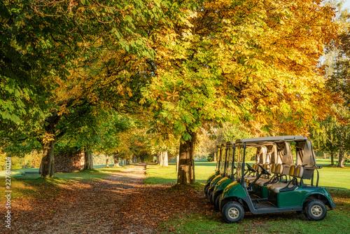 Fotografie, Obraz  Caddies auf einem herbstlichen Golfplatz