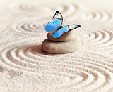 Sand, blue butterfly and spa stone in zen garden. Spa concept.
