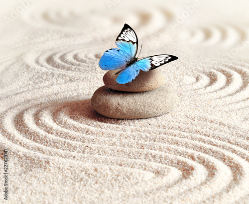 In de dag Stenen in het Zand Sand, blue butterfly and spa stone in zen garden. Spa concept.