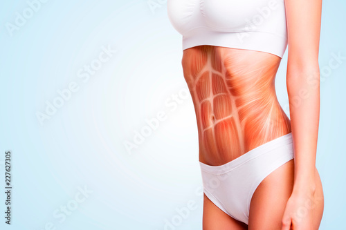 Fotografie, Obraz Woman's abs muscle and body structure