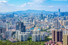 Shenzhen Nanshan District City Scenery Skyline/City Intensive Building