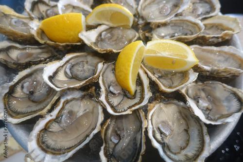 Photo  huitres et citron