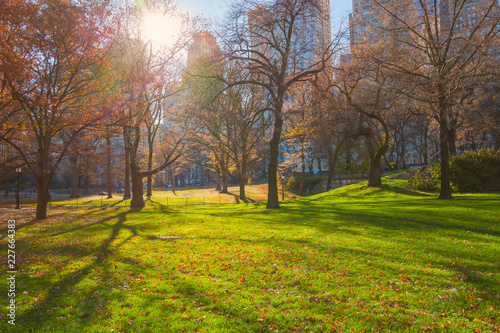 Keuken foto achterwand New York City Central Park. New York. USA in autumn with beautiful fall trees