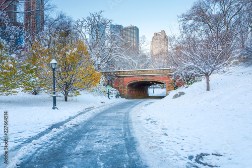 Keuken foto achterwand New York City Central Park. New York. USA in winter covered with snow
