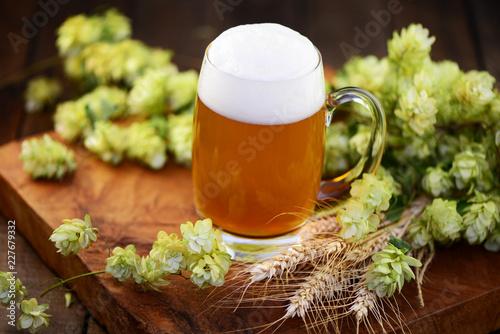 Tuinposter Bier / Cider Bier