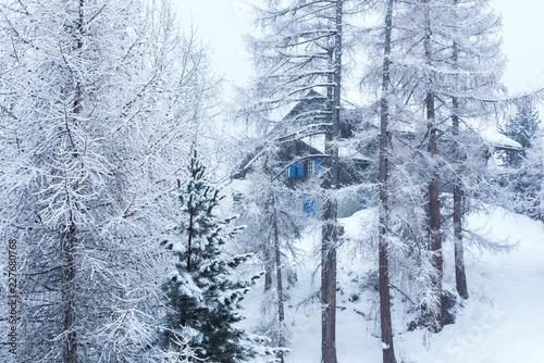Fotobehang Gletsjers Village house hidden behind the trees