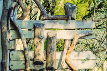 A Creative Wooden Fence. Rural Style Hedge.