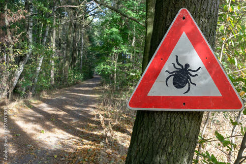 tick insect warning sign in forest #227697303