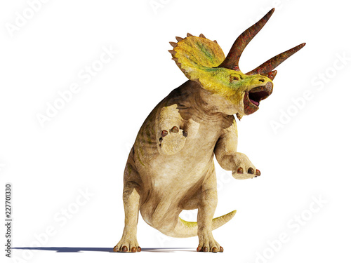 Obraz na plátně  Triceratops horridus dinosaur in action (3d illustration isolated with shadow on
