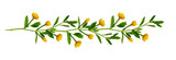 Fototapeta Kwiaty - Line arrangement with fresh leaves and yellow flowers
