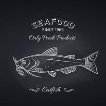 Catfish Hand Drawn Icon