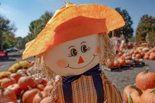 Fall Autumn Scarecrow Smiling Doll Wearing Orange Hat On Blurred Pumpkins Background. Close Up View.  Warm Tonned Pohto.