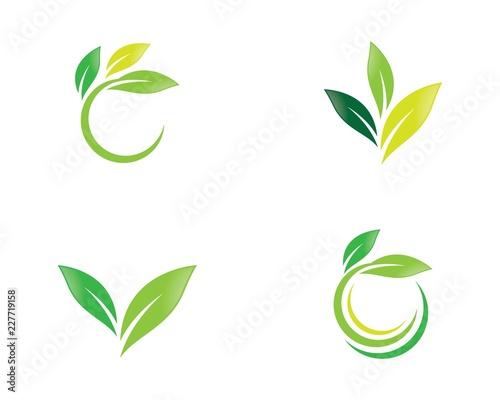 Obraz Green leaf symbol illustration - fototapety do salonu