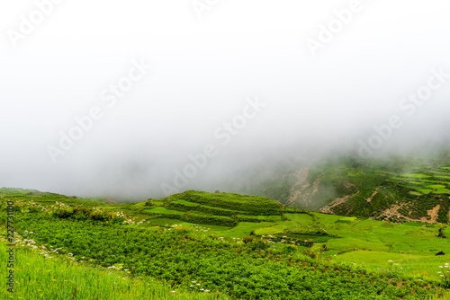 Fotobehang Rijstvelden Green terraced fields in Nar village, Annapurna Area, Nepal