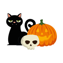 Halloween Black Cat With Skull And Pumpkin