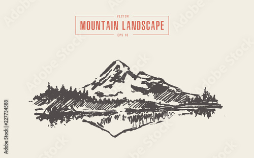 Foto Mountain landscape spruce forest lake vector drawn