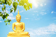 Leinwanddruck Bild Golden Buddha statue under the Bodhi tree leaves
