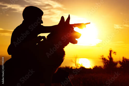 Foto op Canvas Paarden silhouette of a man walking with a dog on the field at sunset, guy training pet in summer nature, boy giving a command
