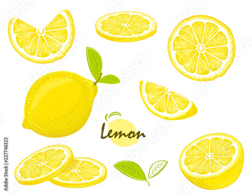 Fotografía Fresh lemon fruits, collection of vector illustrations