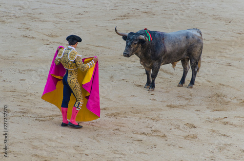 Fotobehang Stierenvechten bullfighter in blue and gold suit